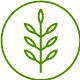 leaf_04